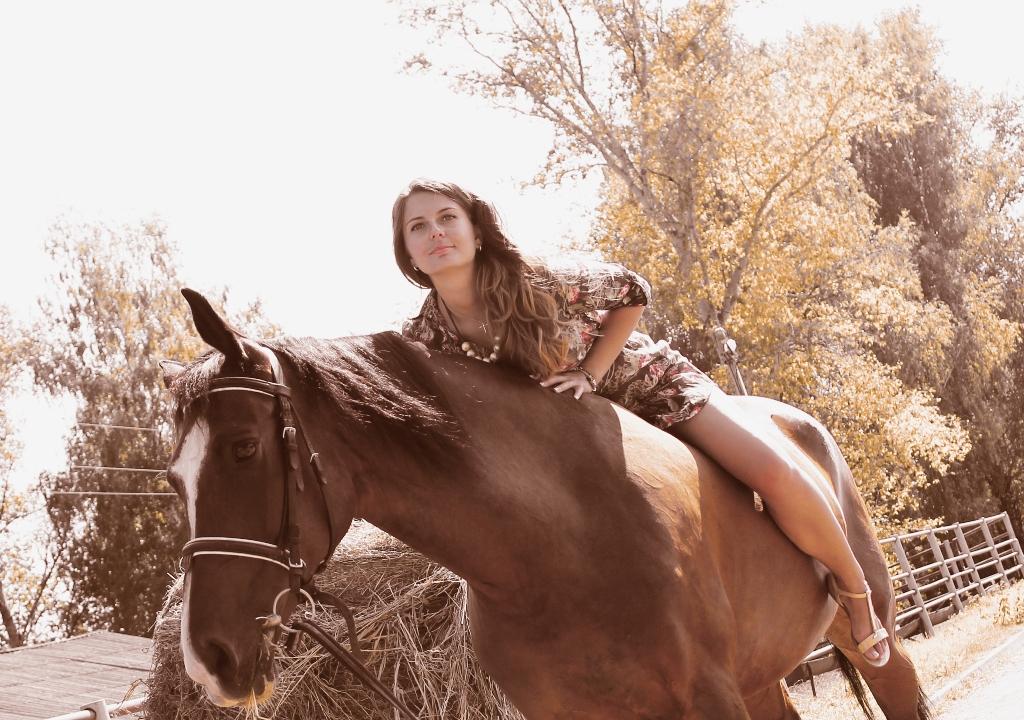 Фотосессии с лошадьми (36)