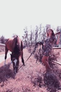 Фотосессии с лошадьми (37)