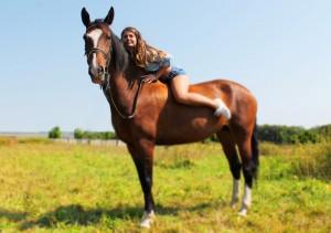 Фотосессии с лошадьми (54)